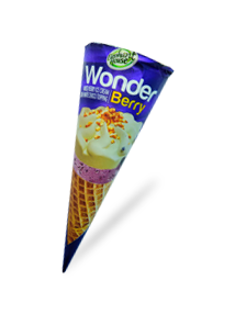 Elephant House Wonder Cone ice cream